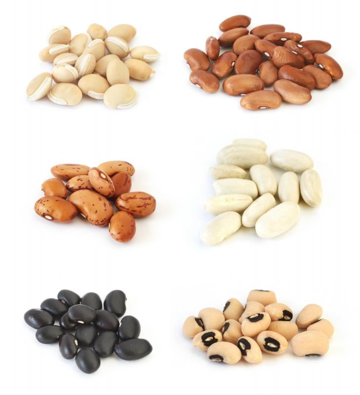 Assorted beans, including hyacinth or lablab beans on the top left and cannellini beans on the center right.