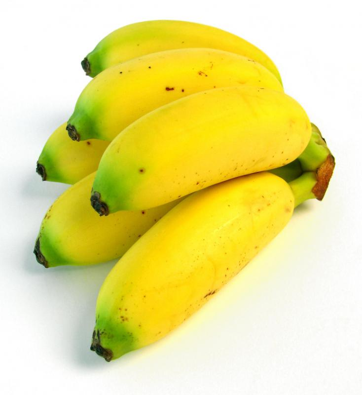 Baby bananas, which can be included in a fruit salad.