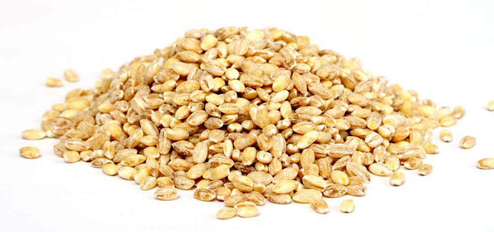 Barley is used to make malt extract.