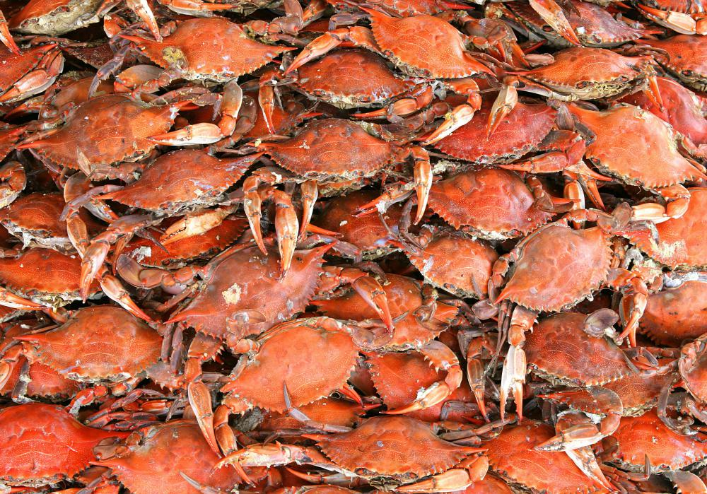 It's best to buy crab caught in the U.S. instead of imported crab.