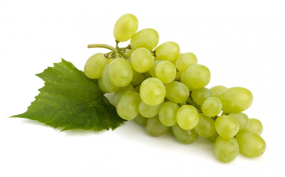 Grapes are used to make champagne vinegar.