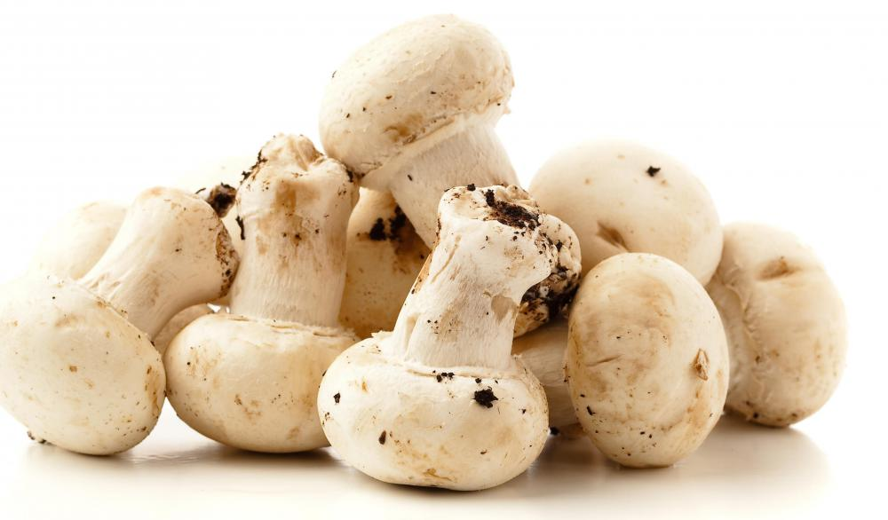 Button mushrooms are often used in moo goo gai pan.