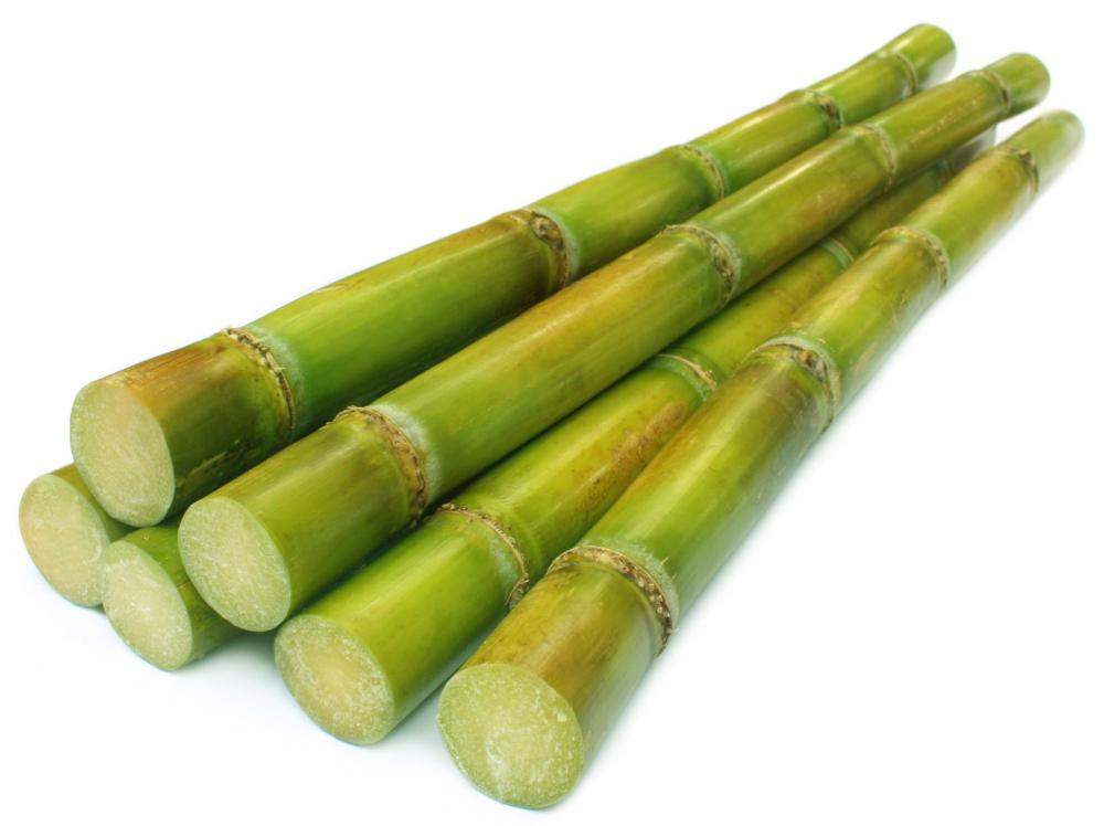 Sugar cane is a source of sugar.