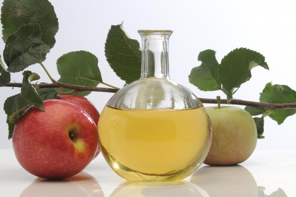 "Acetobacter makes apple cider vinegar cloudy and forms the ""mother of vinegar""."