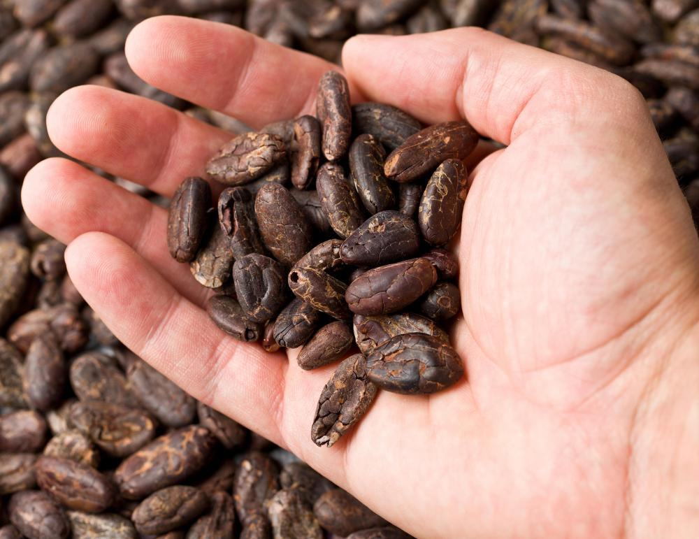 Bittersweet chocolate is produced by grinding down cocoa beans into liquid form.
