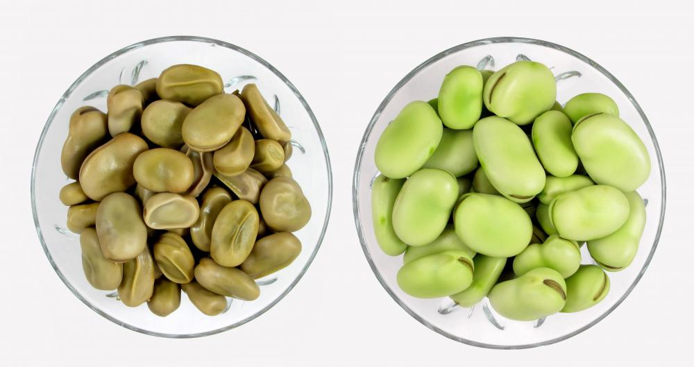 Fava beans have about 13 grams of protein per serving.