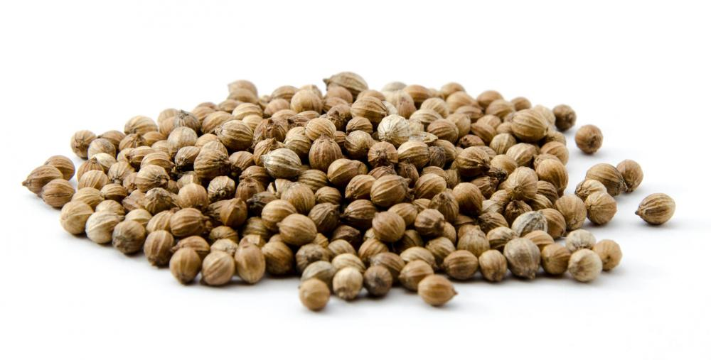 Ground coriander seeds are often used to season chili powder.