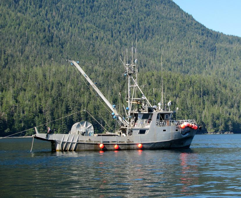 Fishing boats often use flash freezing to preserve their catch.