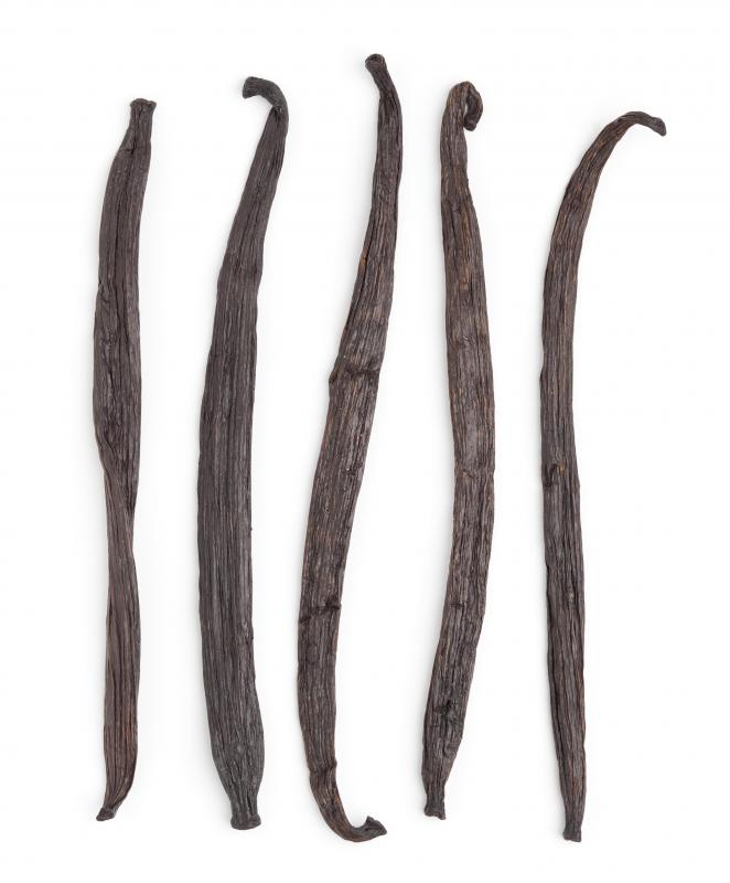 Dried vanilla beans, one ingredient in marron glacé.