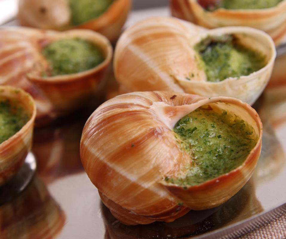 Escargot is the generic term for any edible snail.
