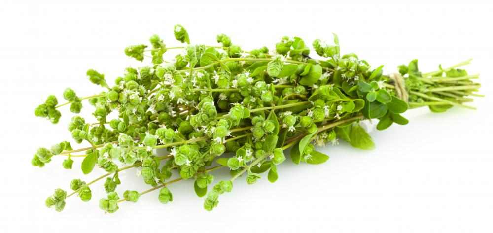 Marjoram is occasionally mistaken for oregano because they taste similar.