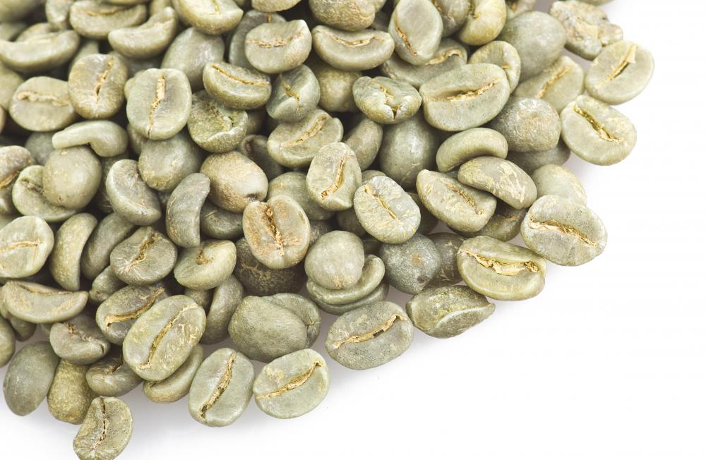 Premium coffee requires optimum conditions for preparing the green, or unroasted, coffee beans.