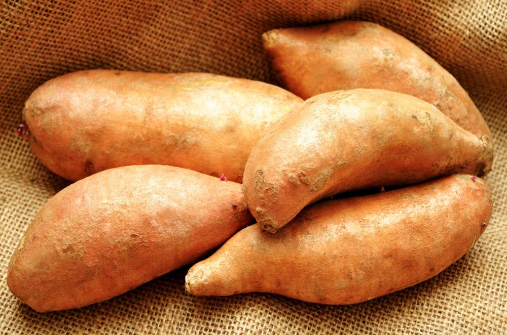 The root vegetable known as the yam is a staple in some cultures' diets.
