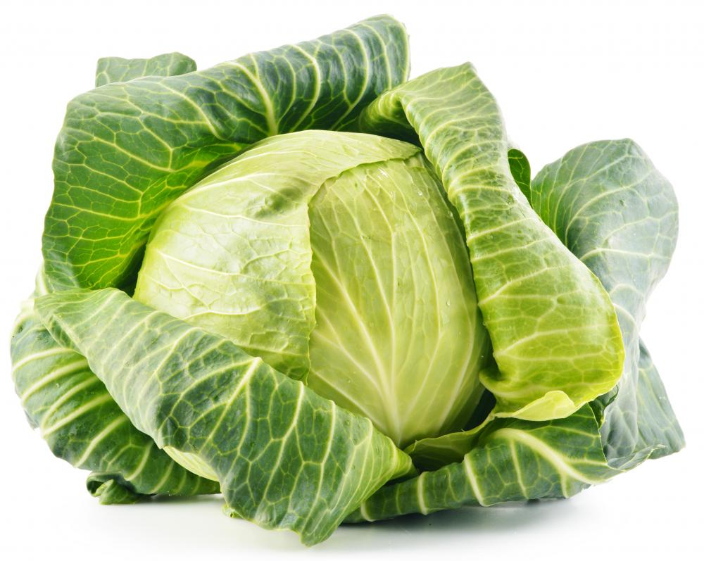 Cabbage is a leafy vegetable that is from the Brassicaceae family.