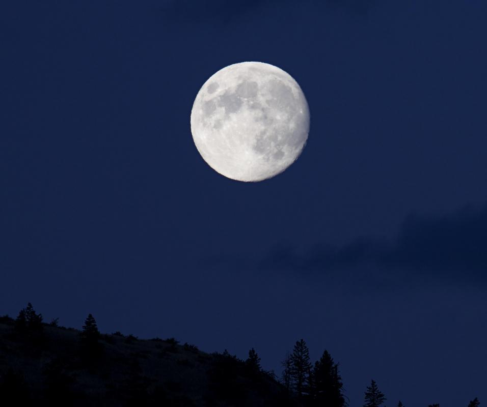 Legend says a miner pointed to the moon when asked how large the treat that would become known as a Moon Pie should be.