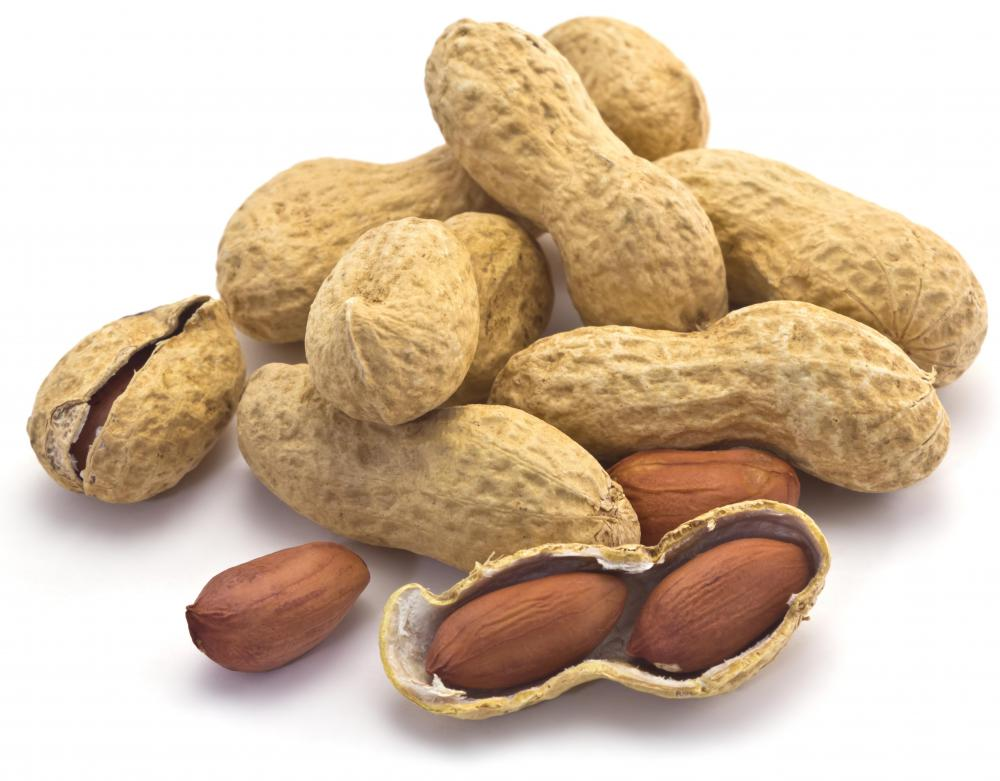 There are four basic types of peanuts: runners, Spanish, valencias, and Virginias.