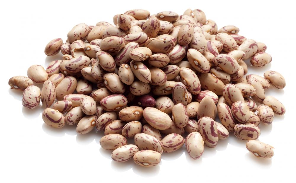 Beans, a type of legume.
