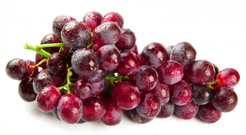 Tannin is found in the skins, stems, and seeds of grapes.