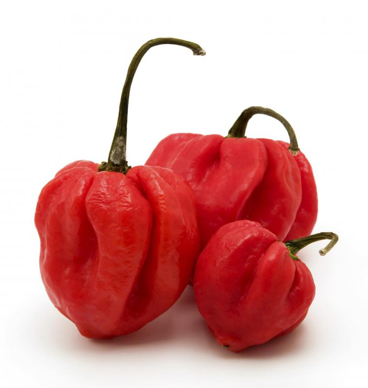 Pimento peppers are large and heart-shaped with a bright red color.