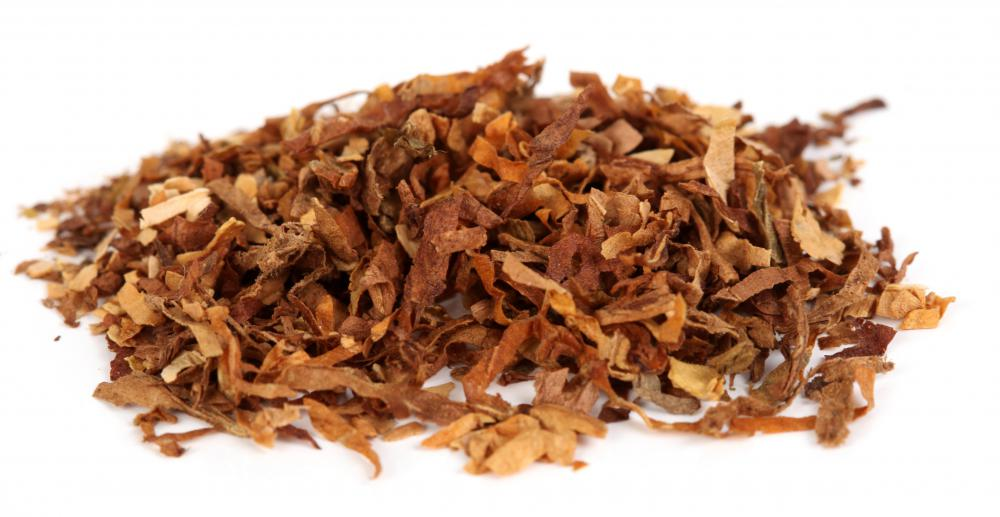 Tobacco, which is used in conjunction with clove to make clove cigarettes.