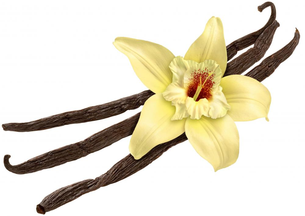 The three types of vanilla beans are Bourbon-Madagascar, Mexican, and Tahitian.