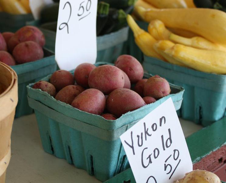 "The Canadian ""Yukon Gold"" potatoes are particularly prevalent yellow potatoes."